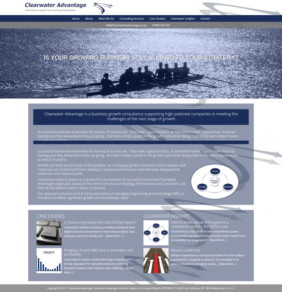 Business Consultant website Design.